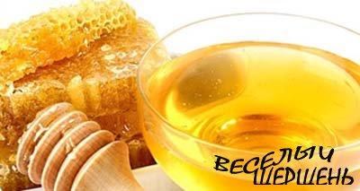 Удивительные и великие свойства меда