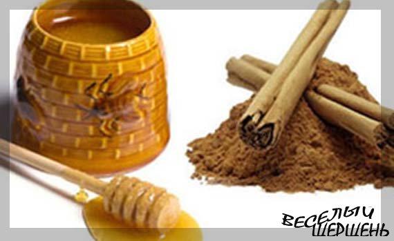Корица с медом для похудения - худеем быстро