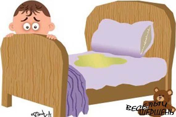 Лечение ночного недержания мочи у женщин, мужчин, подростков и детей медом