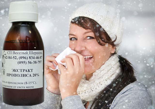Как применять прополис при простуде
