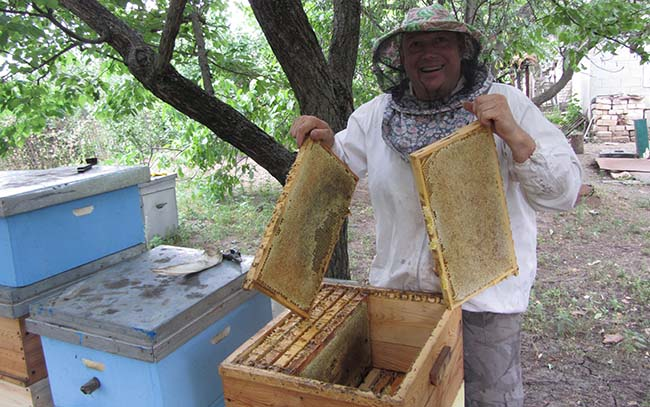 пчеловод с запечатанными рамками