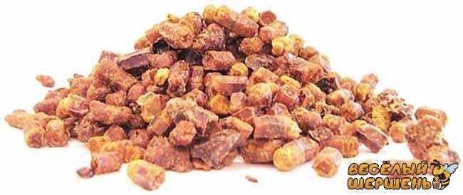Как употреблять пергу в гранулах правильно. Рекомендации пчеловода
