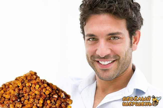 Пчелиная перга для повышения потенции и при бесплодии
