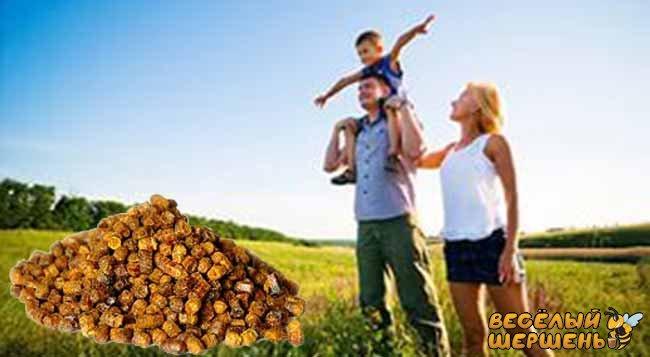 Эффективное применение пчелиной перги. Инструкция