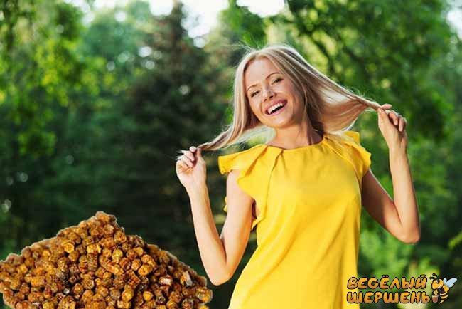 купить пчелиную пергу в Украине