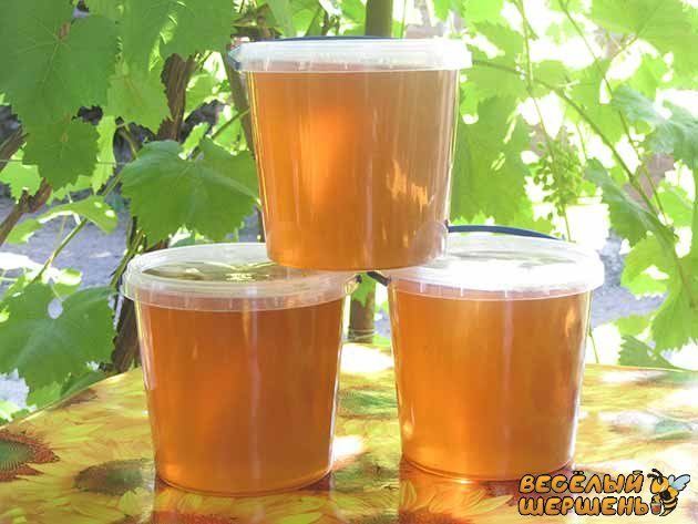 Купить майский мед в Украине у пчеловода