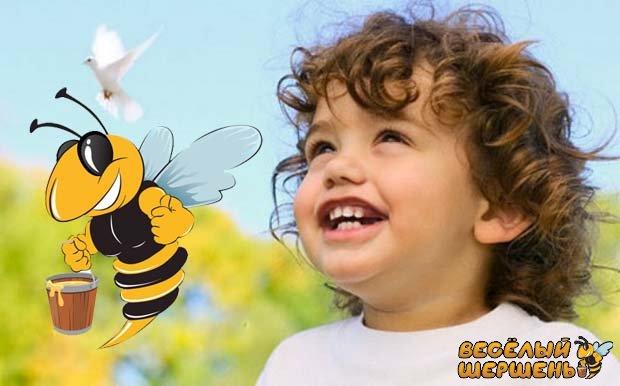 Чем отличается перга от пыльцы. Что лучше