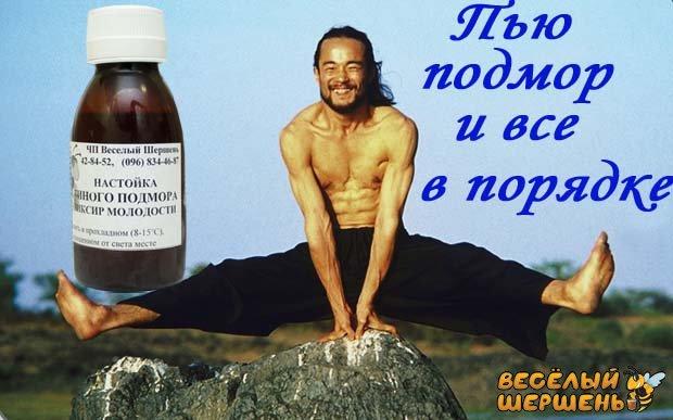 Подмор настойка от простатита простатит лечение в петербурге