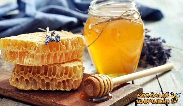 Ешьте перед сном мед для похудения и лечения болезней | zozhmania.