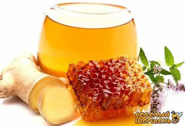 Самый действующий способ с лимоном и медом и имбирем для похудения - рецепт