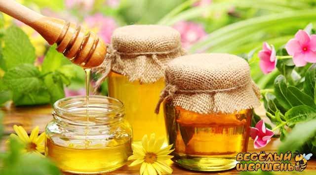 какой мед самый полезный для мужчин