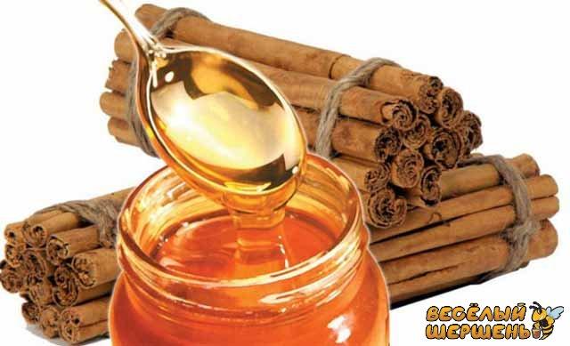 полезные свойства и противопоказания корицы с медом для мужчин