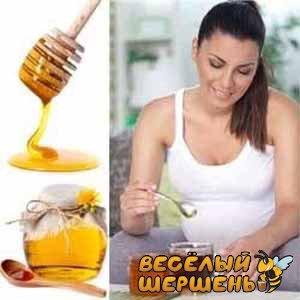 можно ли пить мед при температуре беременным
