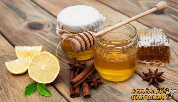 как принимать корицу с медом, польза и вред