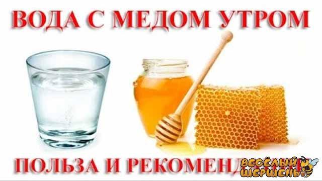 польза и вред для похудения воды с медом натощак