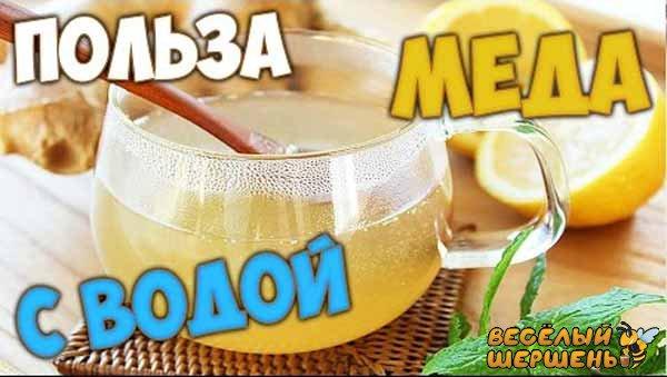 Польза и вред воды с медом натощак - отзывы врачей