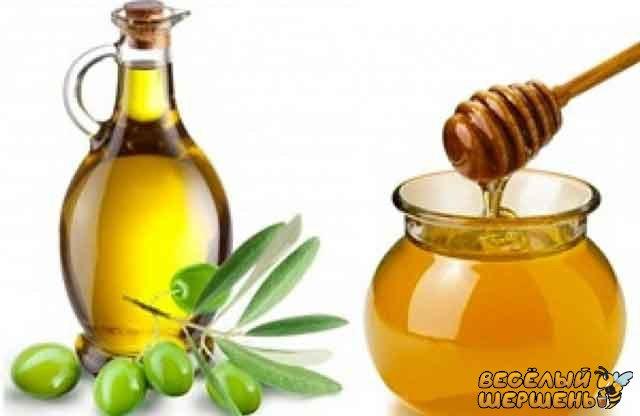маска з оливкової олії і меда для волосся