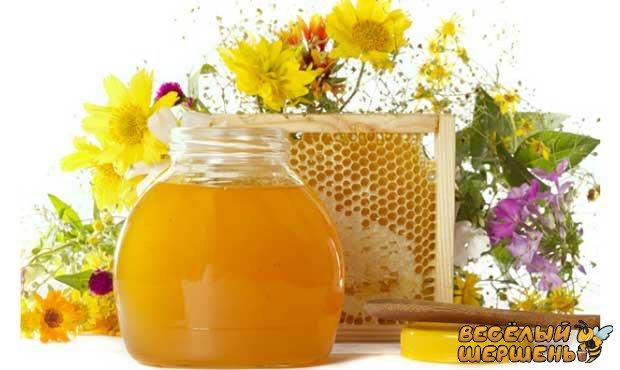 лікування печінки медом