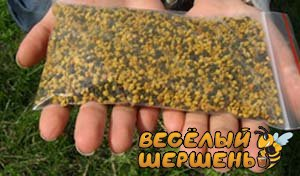 Купити бджолиний пилок в Україні на пасиці