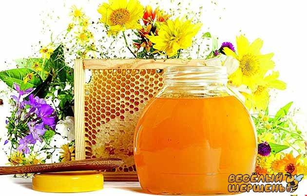 густина меду