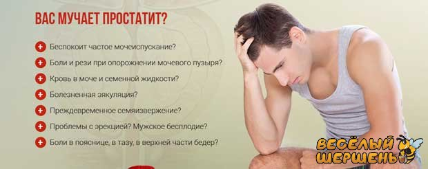 профилактика хронического простатита медом